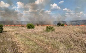 brush fire in comal county
